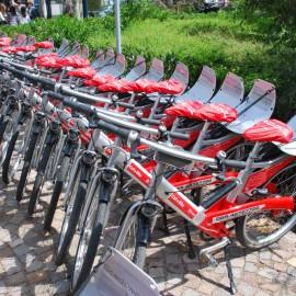 """""""Call a Bike"""" – Radfahren für den Klimaschutz!"""